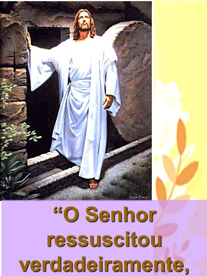 No Dia de Pentecostes, Pedro fala ao povo: De fato, Deus ressuscitou este mesmo Jesus e disso TODOS NÓS SOMOS TESTEMUNHAS!
