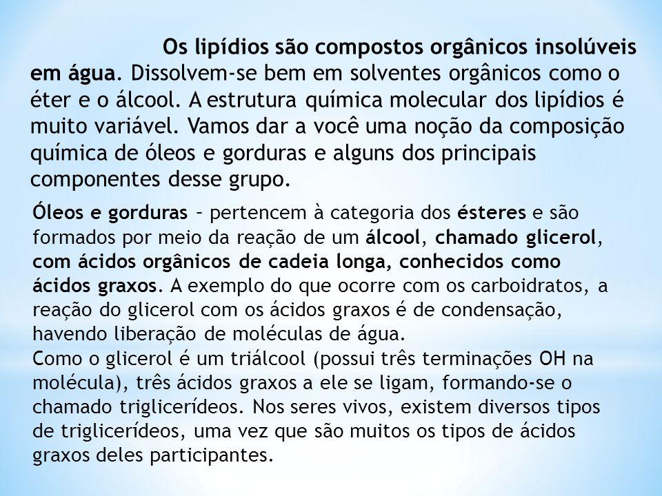 Os lipídios são compostos orgânicos insolúveis em água. Dissolvem-se bem em solventes orgânicos como o éter e o álcool. A estrutura química molecular