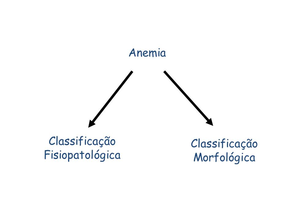 Anemia Classificação Fisiopatológica Classificação Morfológica