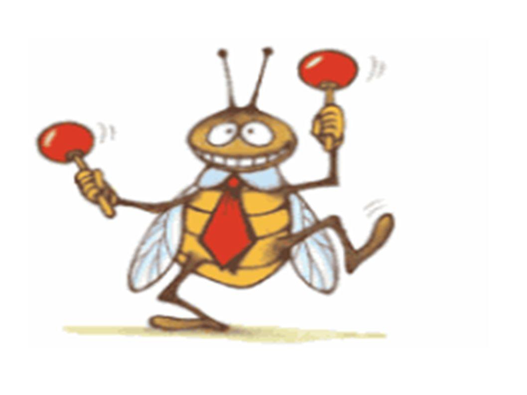 A CIGARRA E AS FORMIGAS Num belo dia de inverno as formigas estavam tendo o maior trabalho para secar suas reservas de trigo.