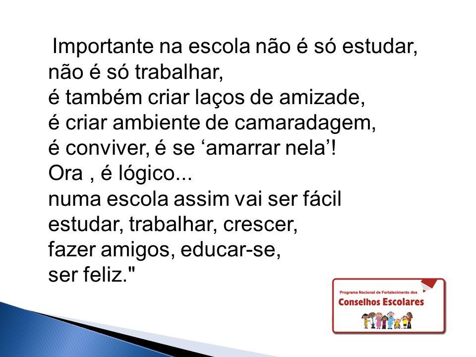Importante na escola não é só estudar, não é só trabalhar, é também criar laços de amizade, é criar ambiente de camaradagem, é conviver, é se 'amarrar nela'.