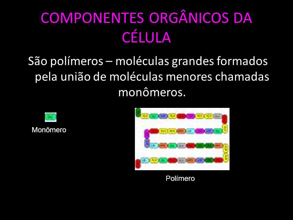 COMPONENTES ORGÂNICOS DA CÉLULA São polímeros – moléculas grandes formados pela união de moléculas menores chamadas monômeros.