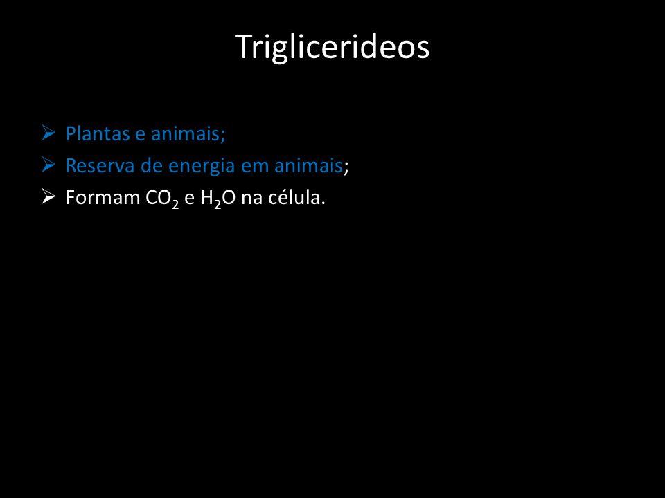 Triglicerideos  Plantas e animais;  Reserva de energia em animais;  Formam CO 2 e H 2 O na célula.