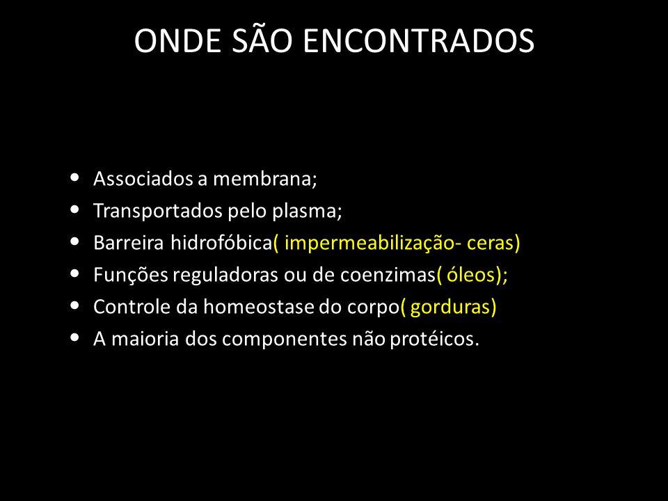 ONDE SÃO ENCONTRADOS Associados a membrana; Transportados pelo plasma; Barreira hidrofóbica( impermeabilização- ceras) Funções reguladoras ou de coenzimas( óleos); Controle da homeostase do corpo( gorduras) A maioria dos componentes não protéicos.