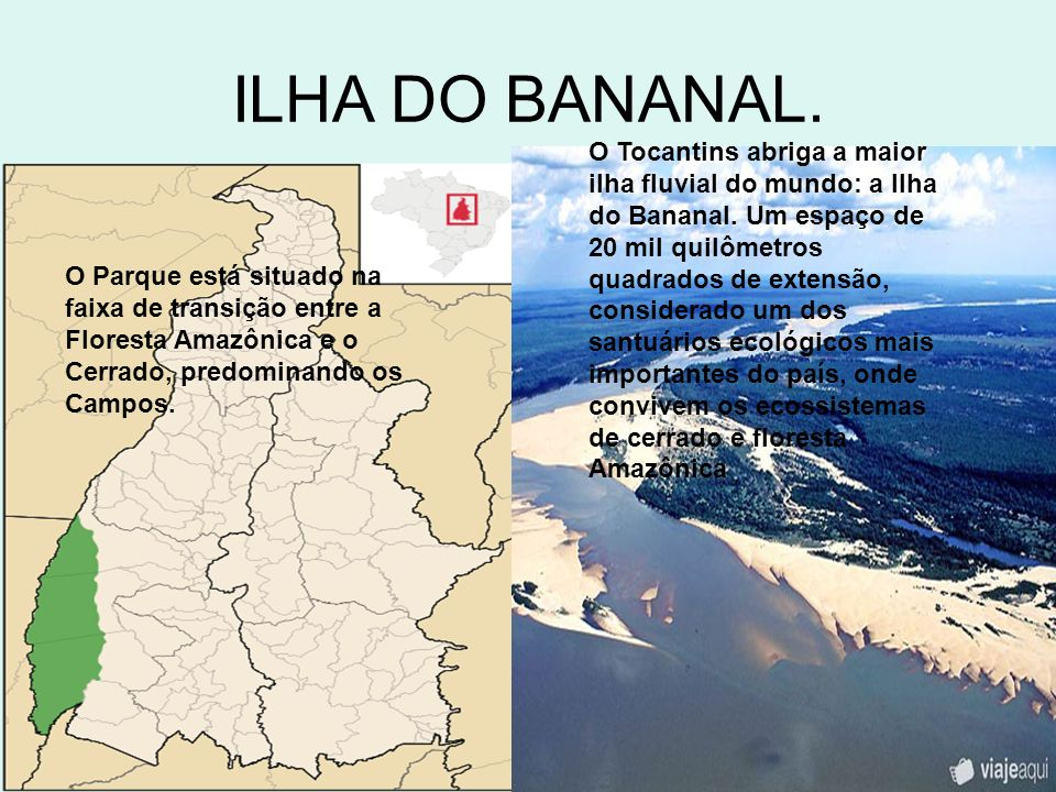 ILHA DO BANANAL.