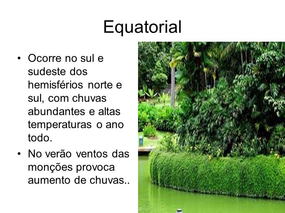 Equatorial Ocorre no sul e sudeste dos hemisférios norte e sul, com chuvas abundantes e altas temperaturas o ano todo.