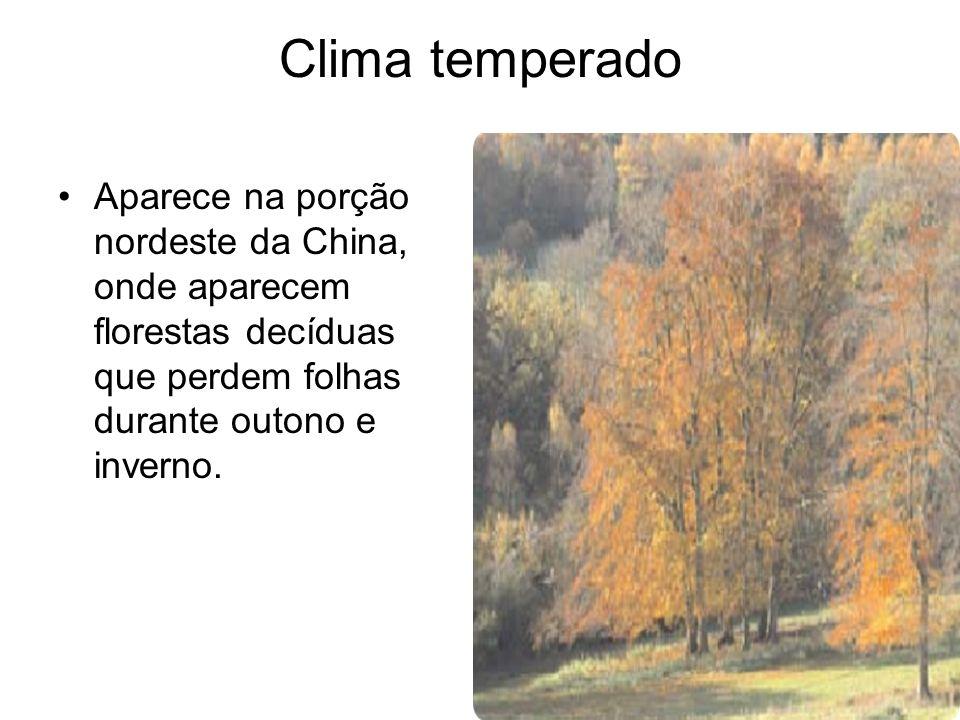 Clima temperado Aparece na porção nordeste da China, onde aparecem florestas decíduas que perdem folhas durante outono e inverno.