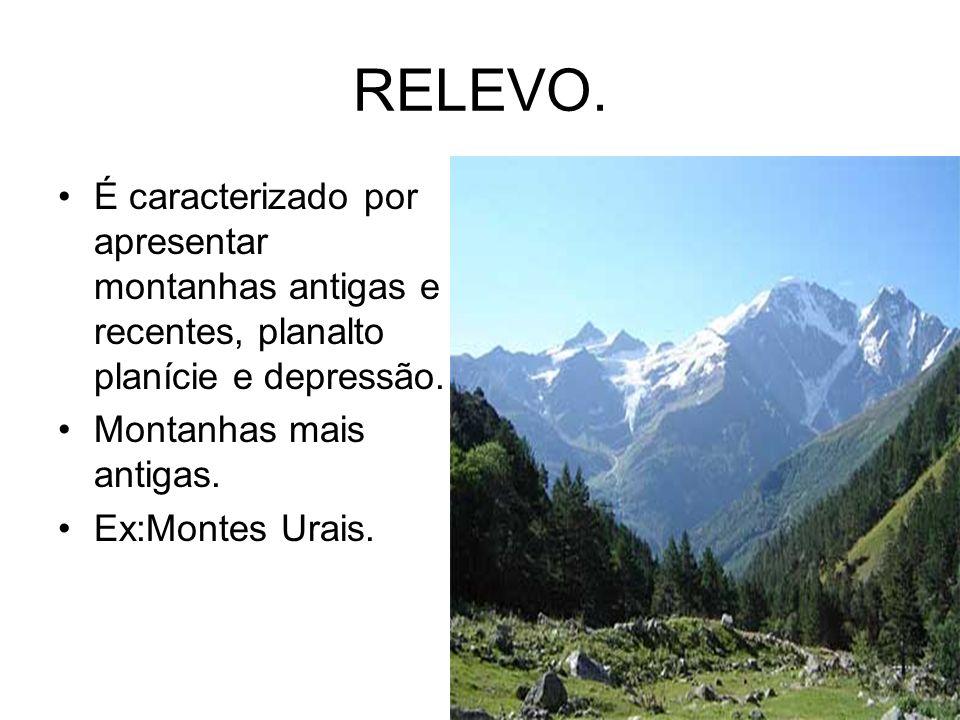 RELEVO.É caracterizado por apresentar montanhas antigas e recentes, planalto planície e depressão.