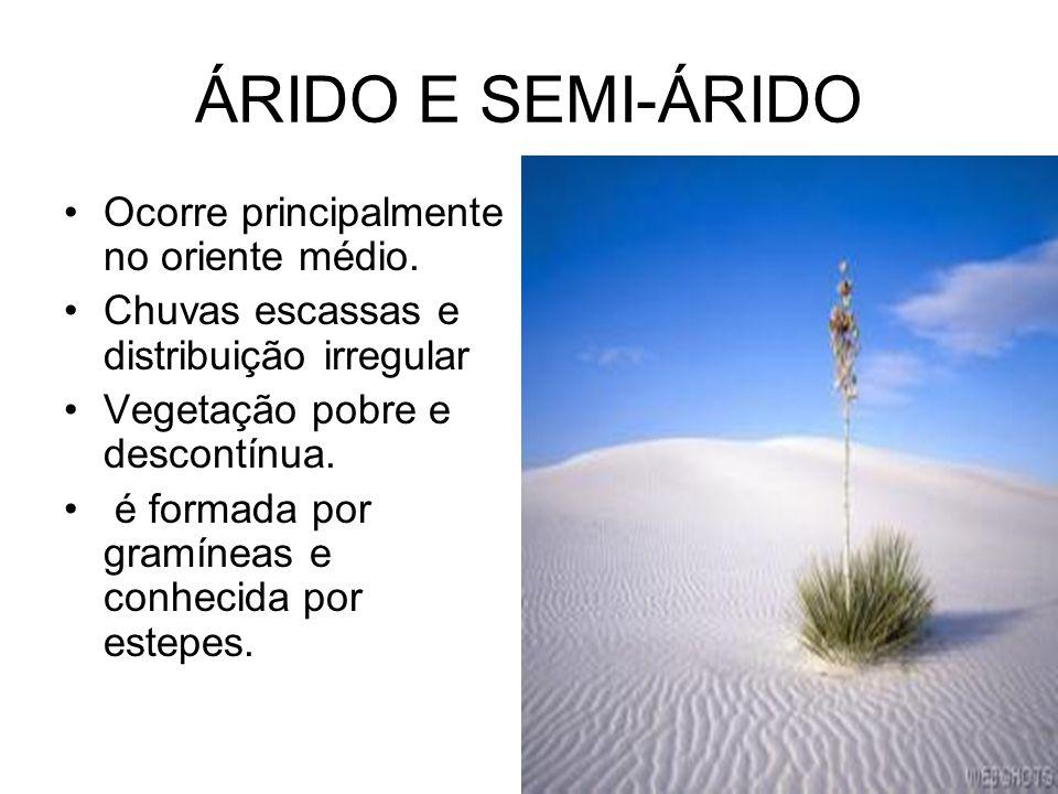 ÁRIDO E SEMI-ÁRIDO Ocorre principalmente no oriente médio.