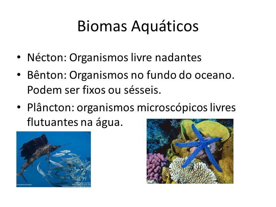 Biomas Aquáticos Nécton: Organismos livre nadantes Bênton: Organismos no fundo do oceano. Podem ser fixos ou sésseis. Plâncton: organismos microscópic