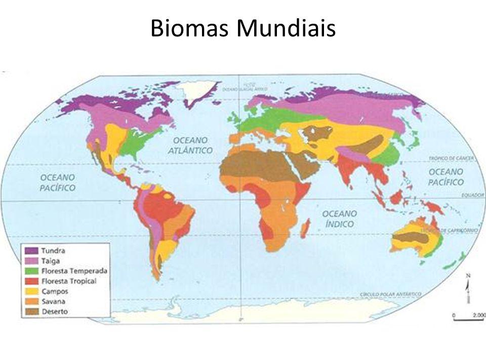 Biomas Mundiais