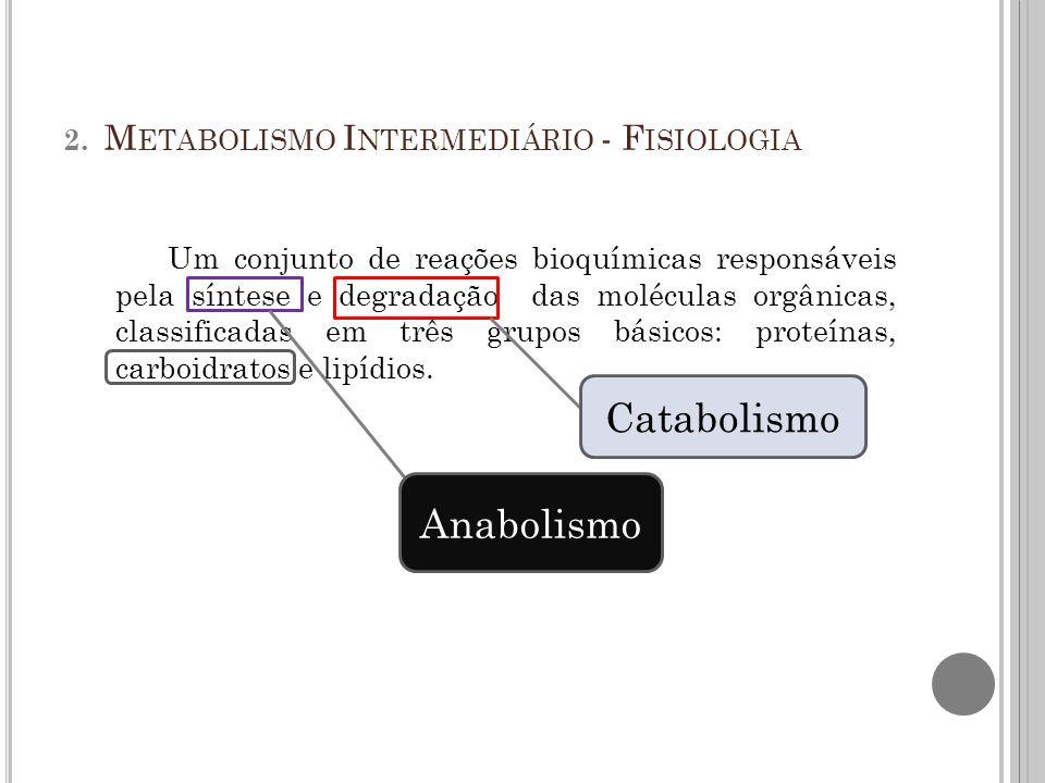 C ONTINUANDO NO METABOLISMO INTERMEDIÁRIO...