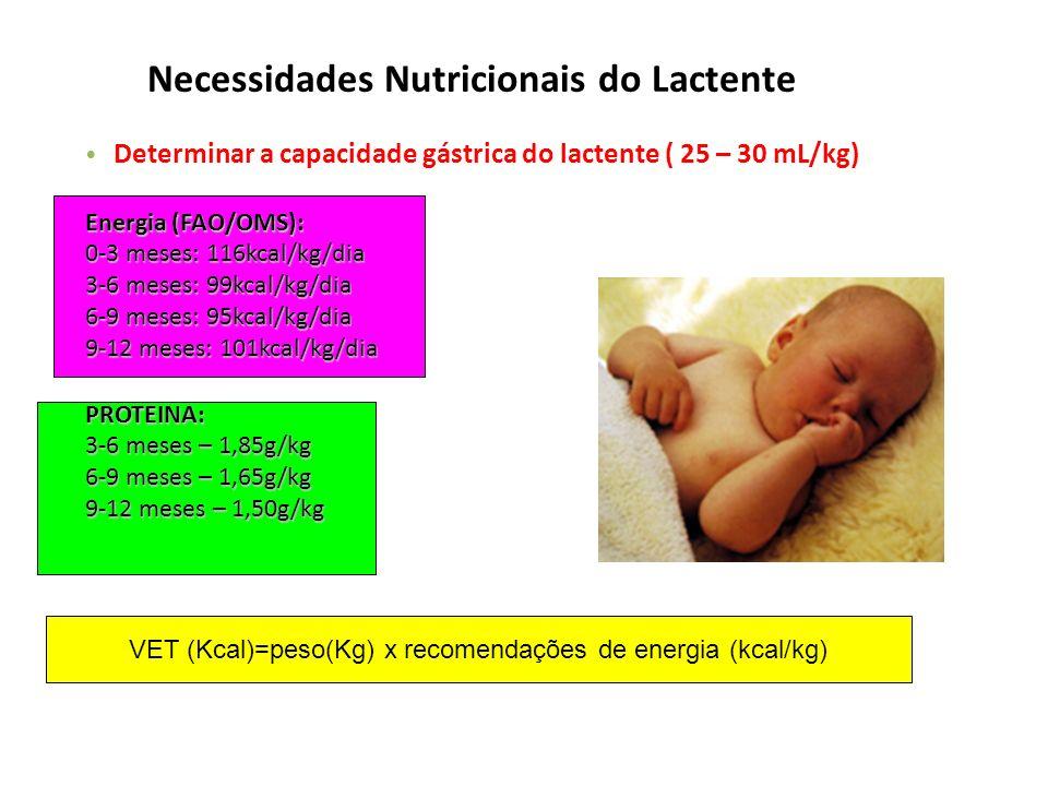 VET (Kcal)=peso(Kg) x recomendações de energia (kcal/kg) Necessidades Nutricionais do Lactente Determinar a capacidade gástrica do lactente ( 25 – 30 mL/kg) Energia (FAO/OMS): 0-3 meses: 116kcal/kg/dia 3-6 meses: 99kcal/kg/dia 6-9 meses: 95kcal/kg/dia 9-12 meses: 101kcal/kg/dia PROTEINA: 3-6 meses – 1,85g/kg 6-9 meses – 1,65g/kg 9-12 meses – 1,50g/kg