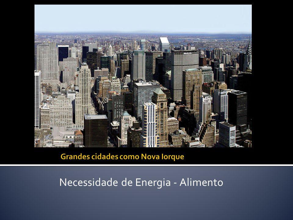 Necessidade de Energia - Alimento