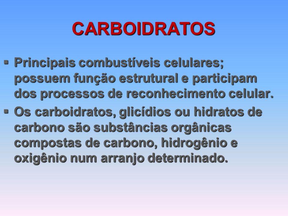 CARBOIDRATOS  Principais combustíveis celulares; possuem função estrutural e participam dos processos de reconhecimento celular.