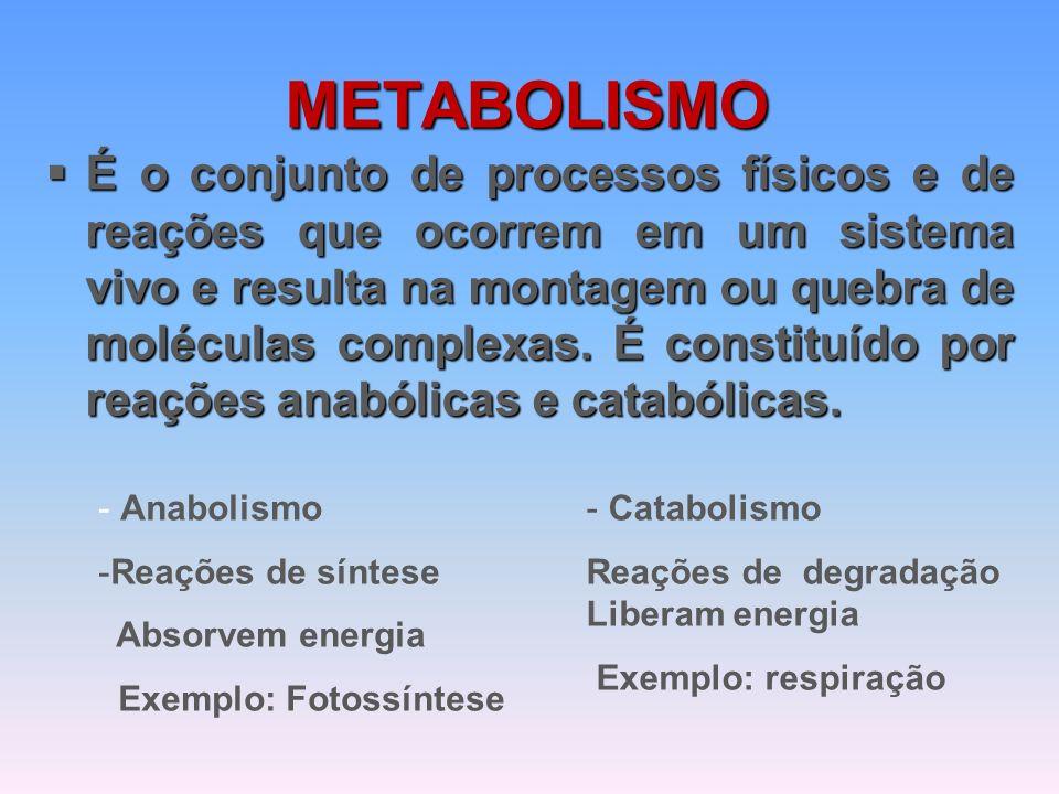 METABOLISMO  É o conjunto de processos físicos e de reações que ocorrem em um sistema vivo e resulta na montagem ou quebra de moléculas complexas.