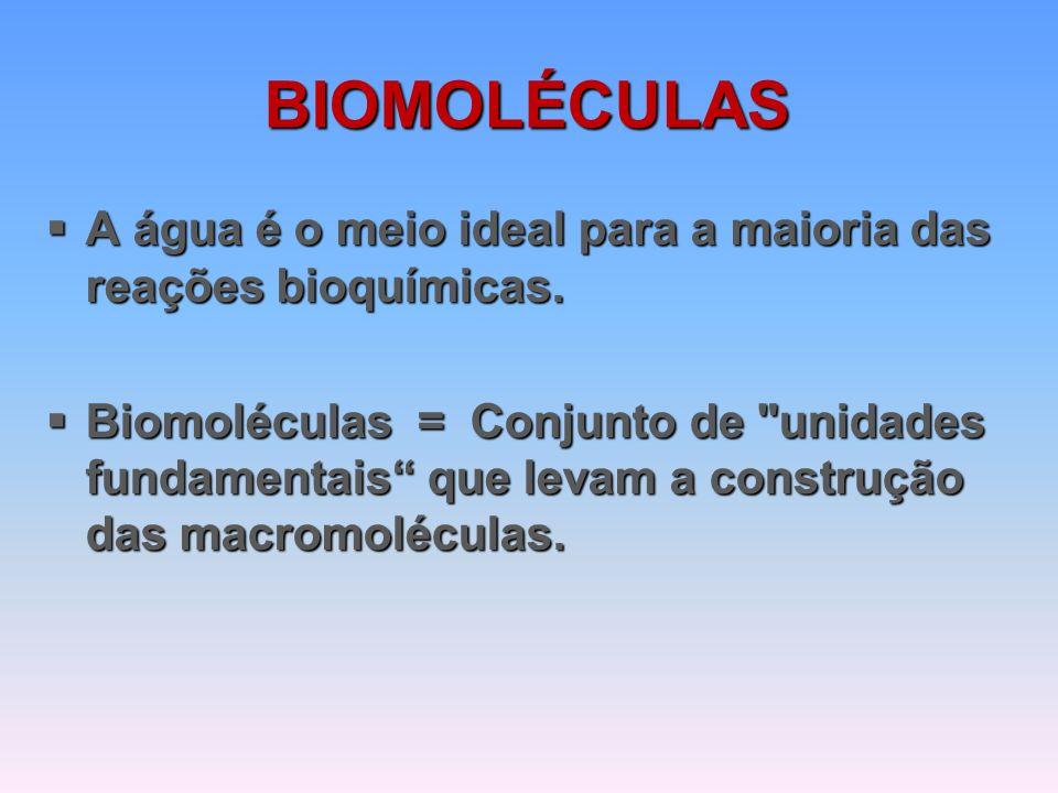 BIOMOLÉCULAS  PROTEÍNAS  ÁCIDOS NUCLEICOS – DNA/RNA  CARBOIDRATOS  LIPÍDIOS  VITAMINAS  SAIS MINERAIS
