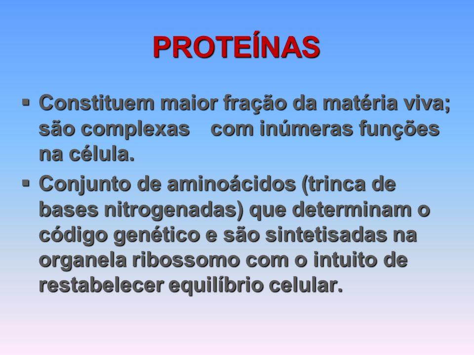 PROTEÍNAS  Constituem maior fração da matéria viva; são complexas com inúmeras funções na célula.