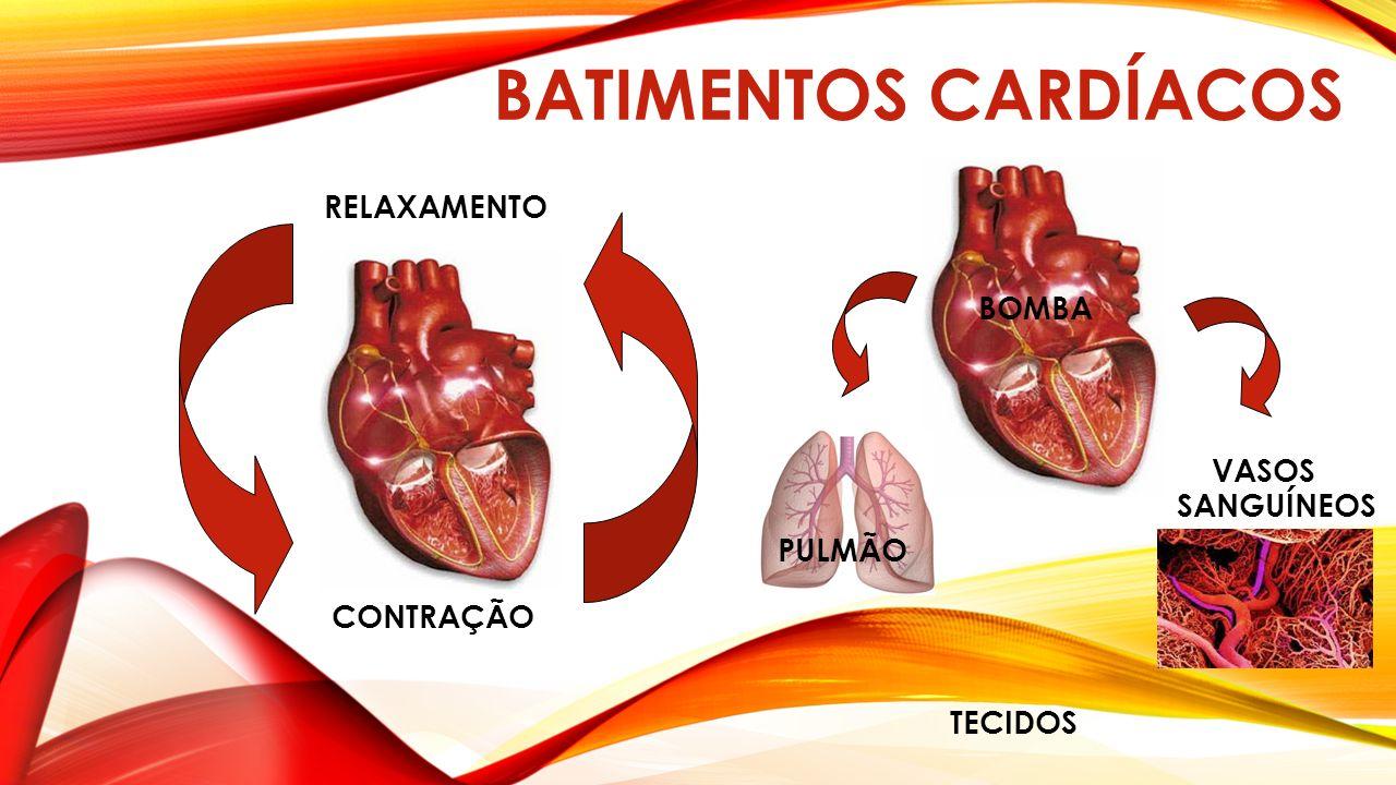 BATIMENTOS CARDÍACOS RELAXAMENTO CONTRAÇÃO VASOS SANGUÍNEOS BOMBA PULMÃO TECIDOS