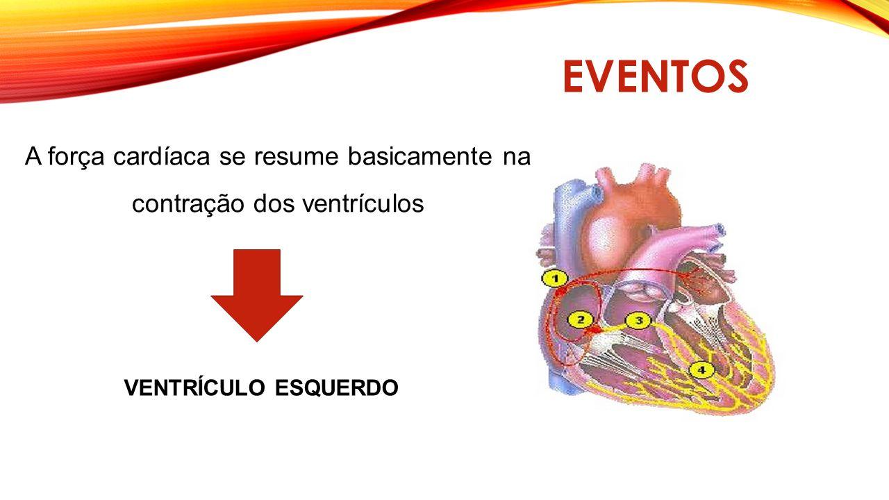 EVENTOS Ventrículo direito Ventrículo esquerdo Pulmão = oxigenação sangue Sangue oxigenado - corpo