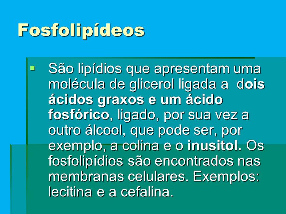 Fosfolipídeos  São lipídios que apresentam uma molécula de glicerol ligada a dois ácidos graxos e um ácido fosfórico, ligado, por sua vez a outro álcool, que pode ser, por exemplo, a colina e o inusitol.
