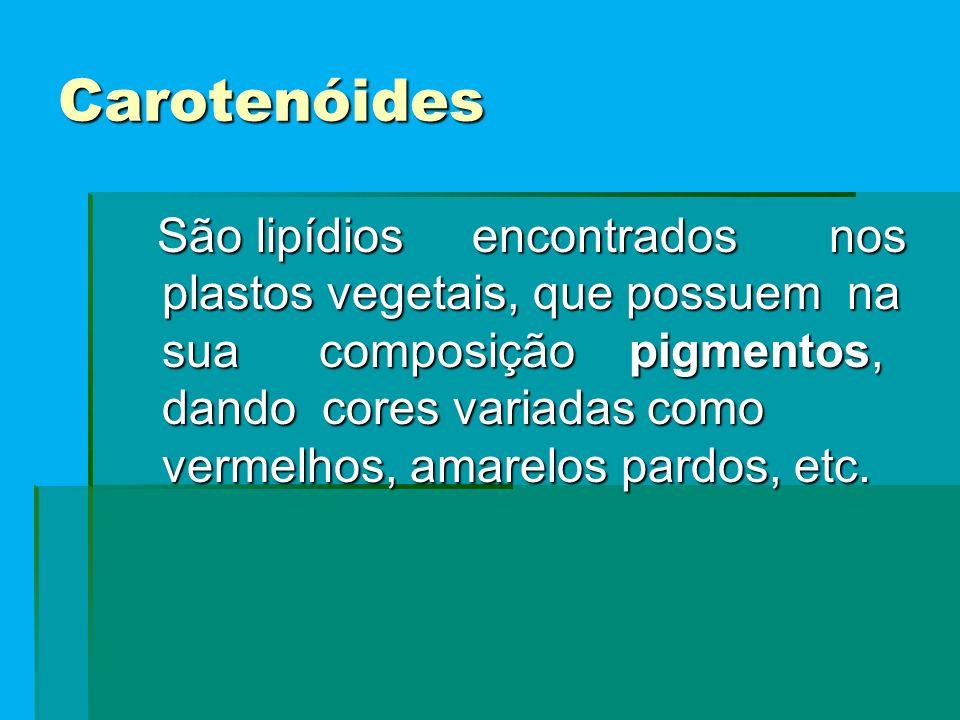 Carotenóides São lipídios encontrados nos plastos vegetais, que possuem na sua composição pigmentos, dando cores variadas como vermelhos, amarelos pardos, etc.