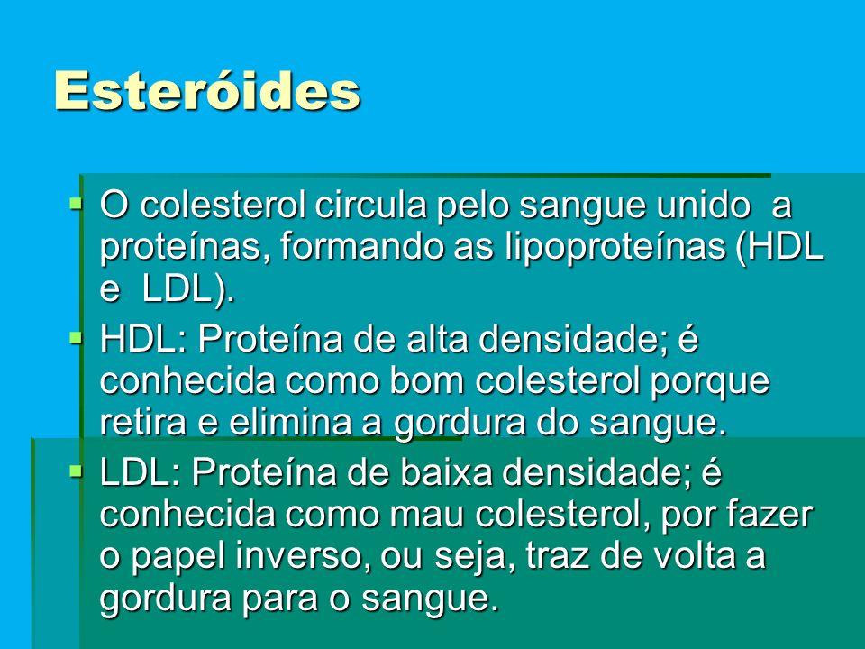 Esteróides  O colesterol circula pelo sangue unido a proteínas, formando as lipoproteínas (HDL e LDL).  HDL: Proteína de alta densidade; é conhecida