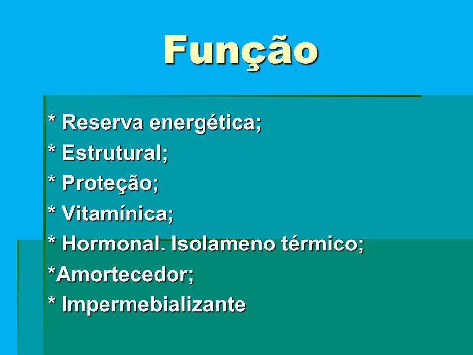 Função * Reserva energética; * Estrutural; * Proteção; * Vitamínica; * Hormonal.