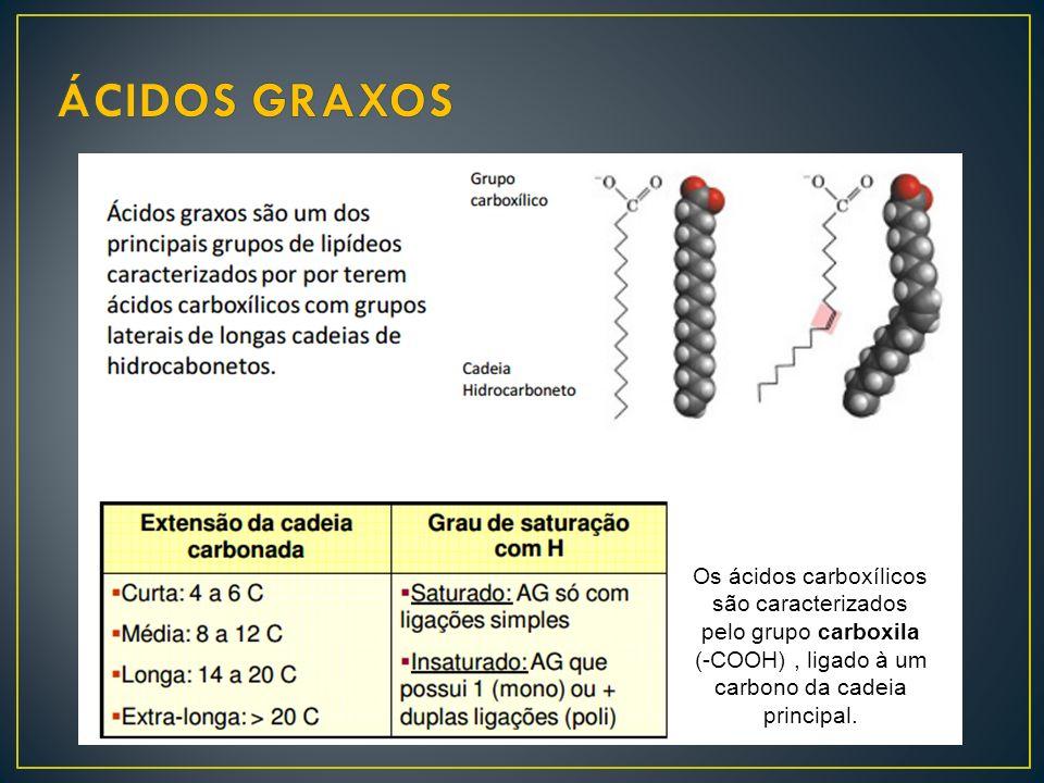 Os ácidos carboxílicos são caracterizados pelo grupo carboxila (-COOH), ligado à um carbono da cadeia principal.