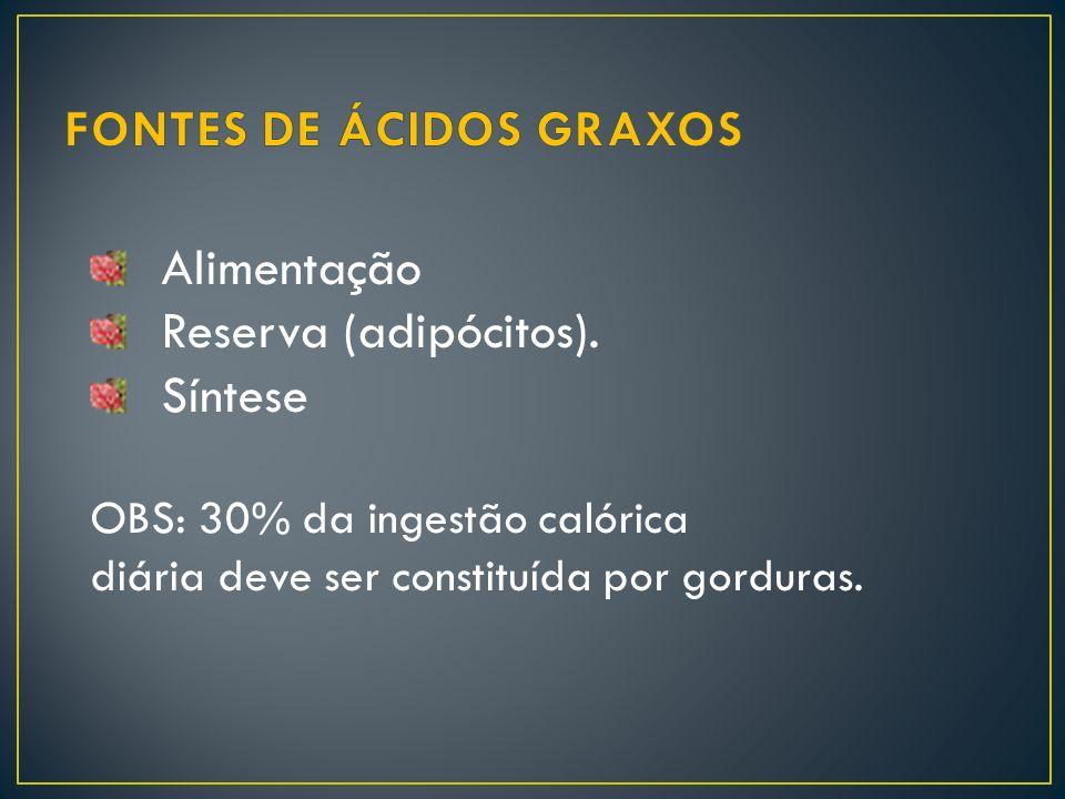 Alimentação Reserva (adipócitos). Síntese OBS: 30% da ingestão calórica diária deve ser constituída por gorduras.