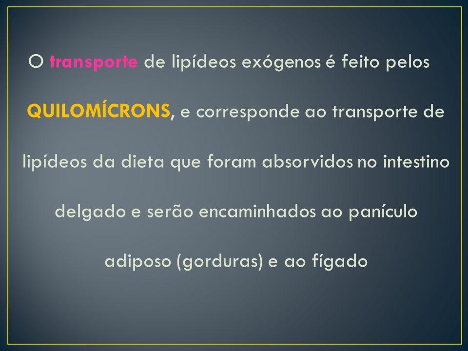 O transporte de lipídeos exógenos é feito pelos QUILOMÍCRONS, e corresponde ao transporte de lipídeos da dieta que foram absorvidos no intestino delga
