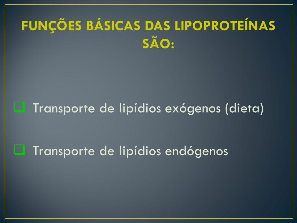 FUNÇÕES BÁSICAS DAS LIPOPROTEÍNAS SÃO:  Transporte de lipídios exógenos (dieta)  Transporte de lipídios endógenos