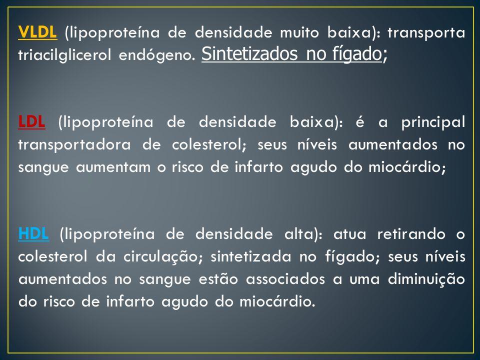 VLDL (lipoproteína de densidade muito baixa): transporta triacilglicerol endógeno. Sintetizados no fígado; LDL (lipoproteína de densidade baixa): é a