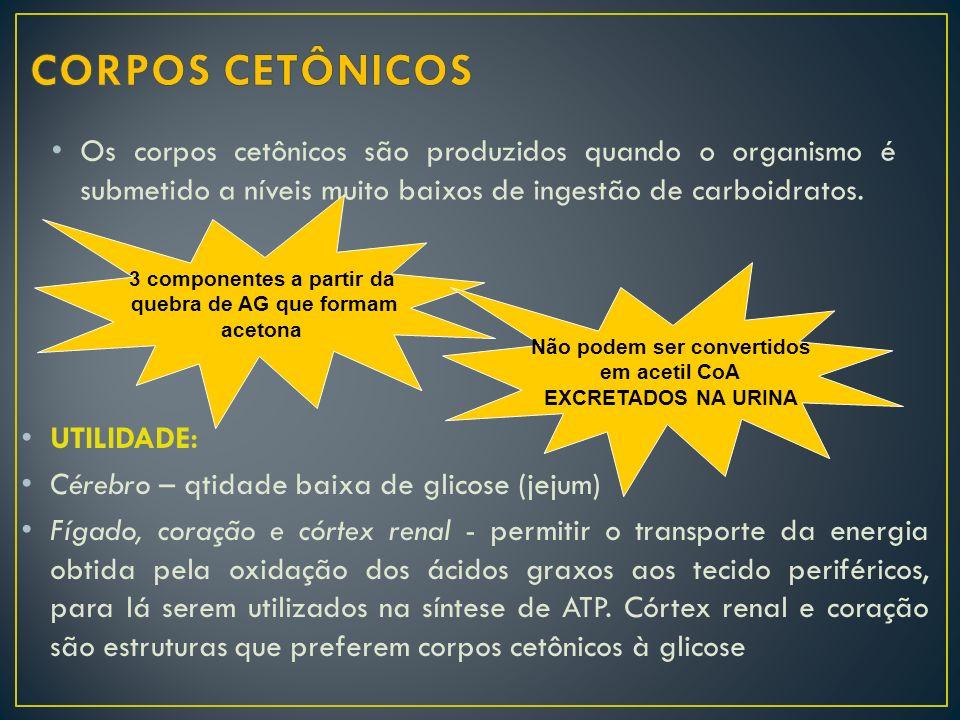 Os corpos cetônicos são produzidos quando o organismo é submetido a níveis muito baixos de ingestão de carboidratos. 3 componentes a partir da quebra