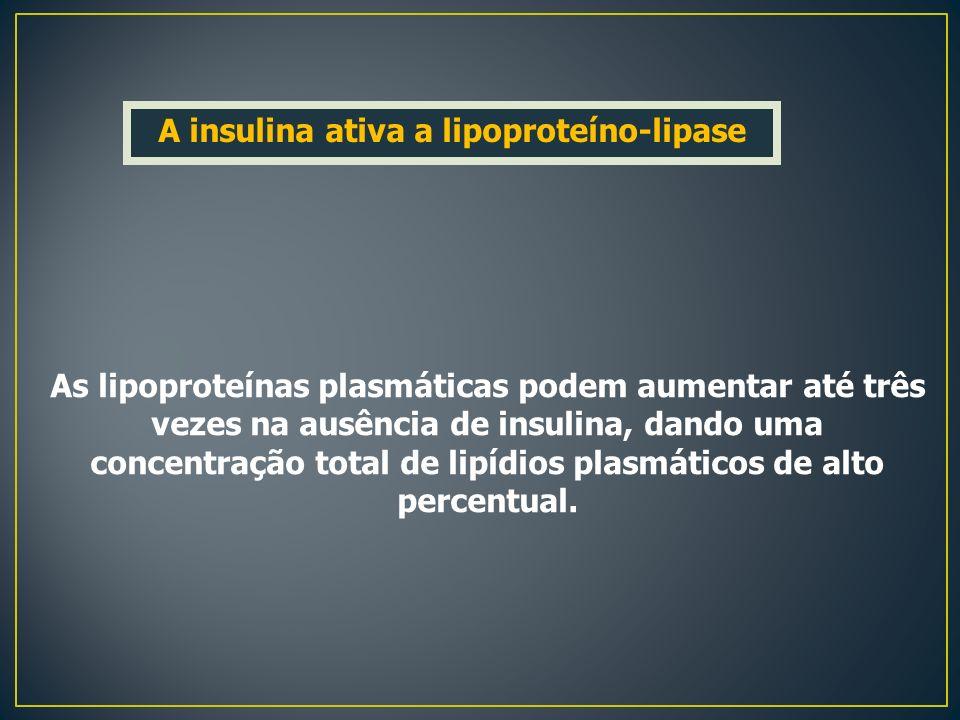 As lipoproteínas plasmáticas podem aumentar até três vezes na ausência de insulina, dando uma concentração total de lipídios plasmáticos de alto perce