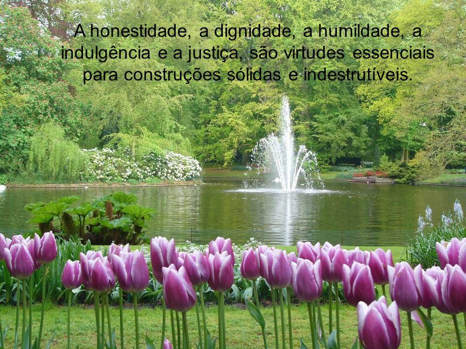 Nossos maiores tesouros são as virtudes. A compaixão, a fraternidade, a solidariedade, a ternura, o afeto, são elementos importantes na construção da
