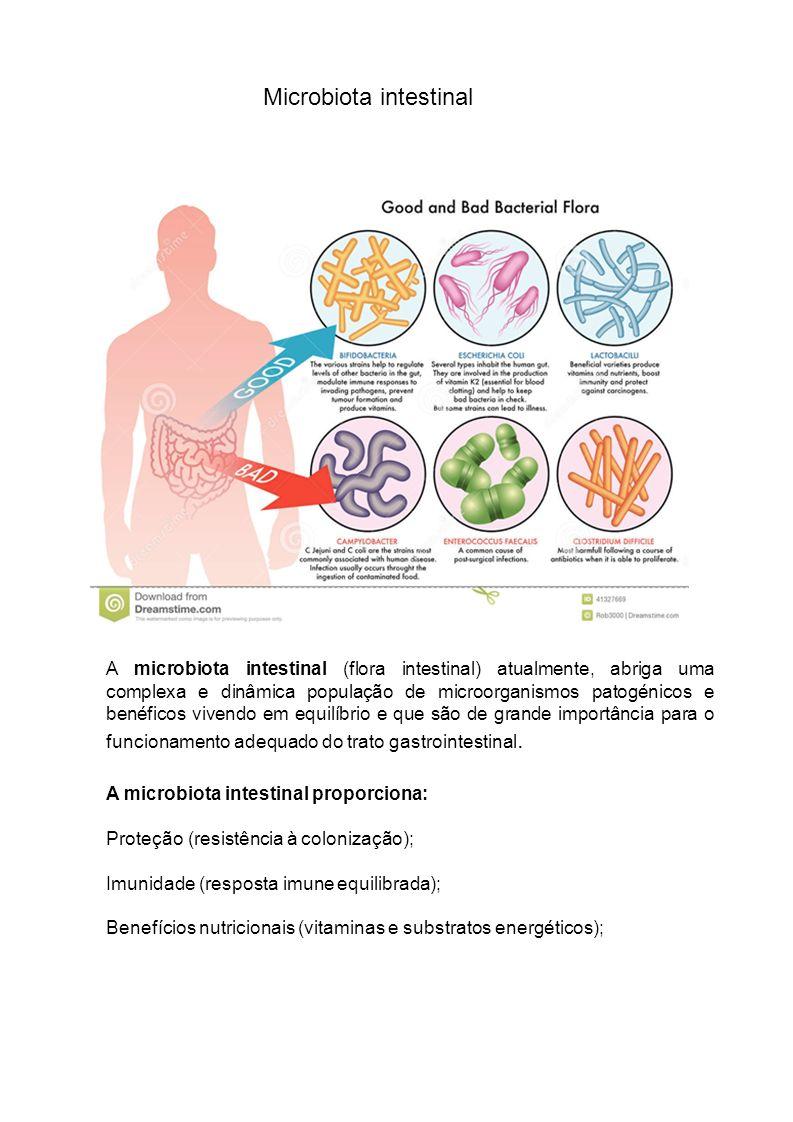 A microbiota intestinal (flora intestinal) atualmente, abriga uma complexa e dinâmica população de microorganismos patogénicos e benéficos vivendo em equilíbrio e que são de grande importância para o funcionamento adequado do trato gastrointestinal.