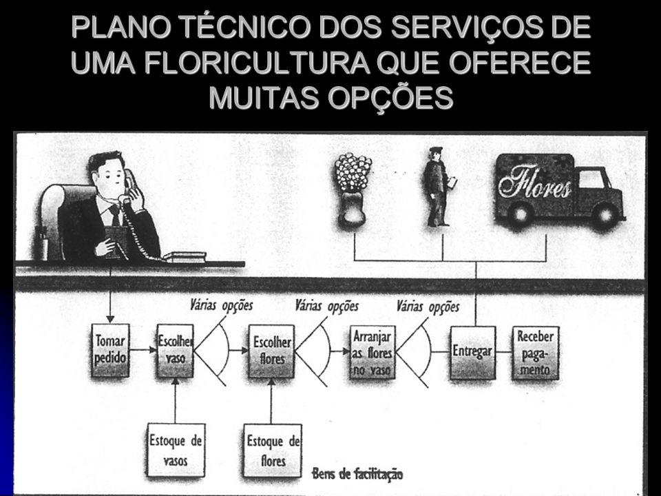 PLANO TÉCNICO DOS SERVIÇOS DE UMA FLORICULTURA QUE OFERECE MUITAS OPÇÕES