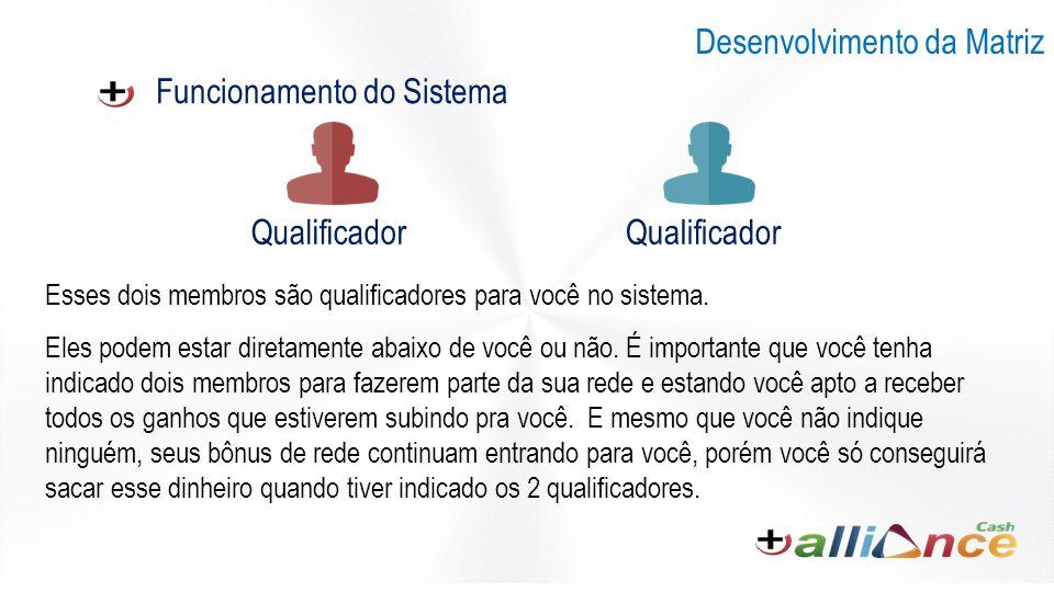 Funcionamento do Sistema Desenvolvimento da Matriz Esses dois membros são qualificadores para você no sistema.
