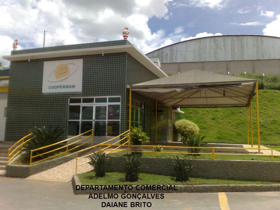 DEPARTAMENTO COMERCIAL ADELMO GONÇALVES DAIANE BRITO