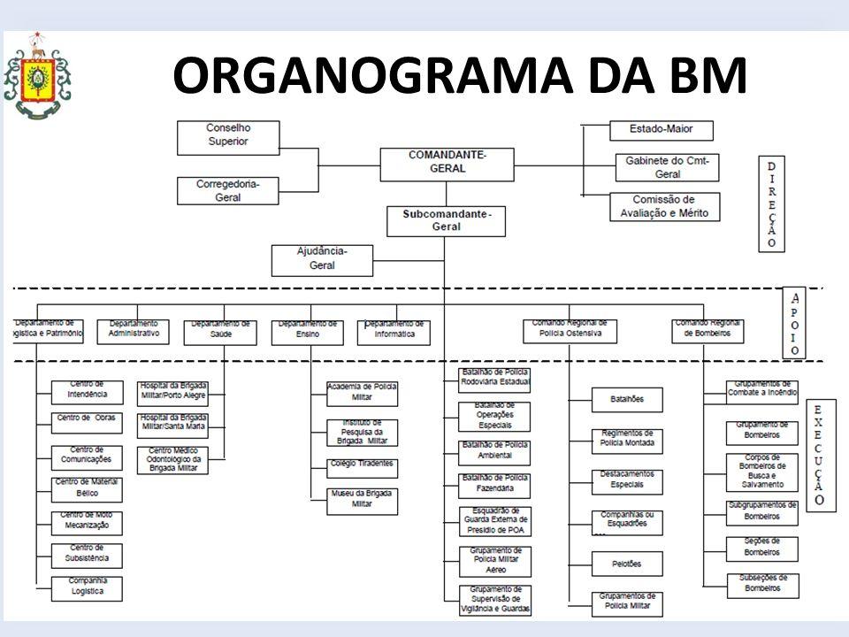 ORGANOGRAMA DA BM