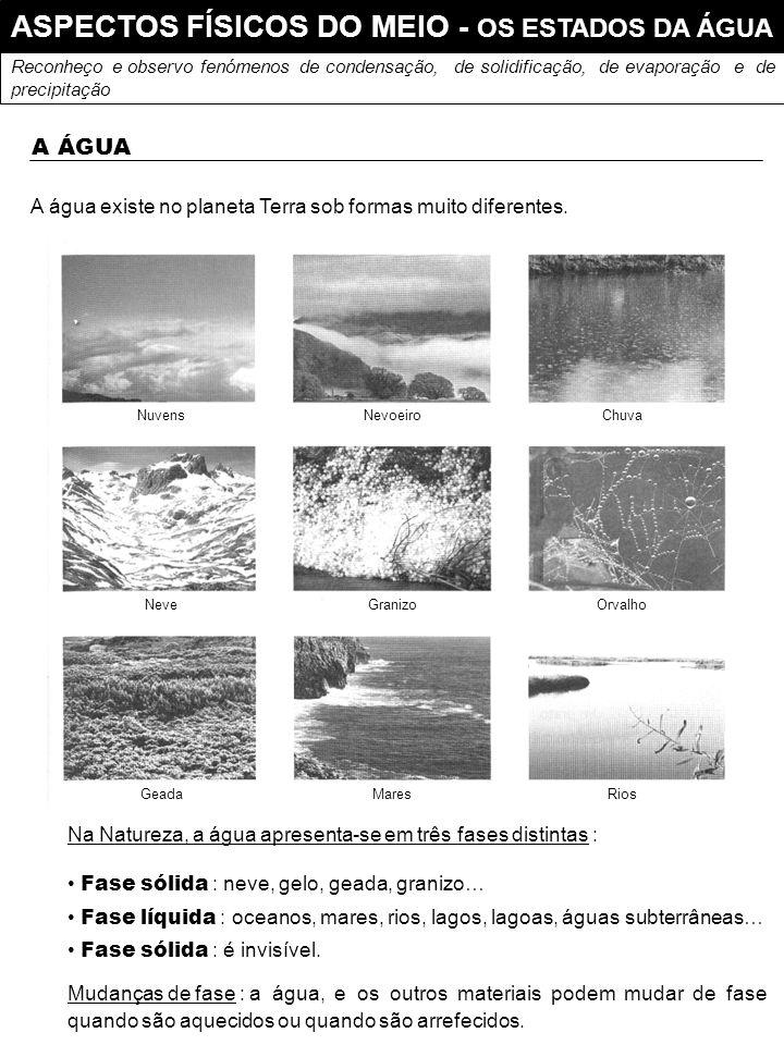 ASPECTOS FÍSICOS DO MEIO - OS ESTADOS DA ÁGUA Reconheço e observo fenómenos de condensação, de solidificação, de evaporação e de precipitação A ÁGUA A água existe no planeta Terra sob formas muito diferentes.