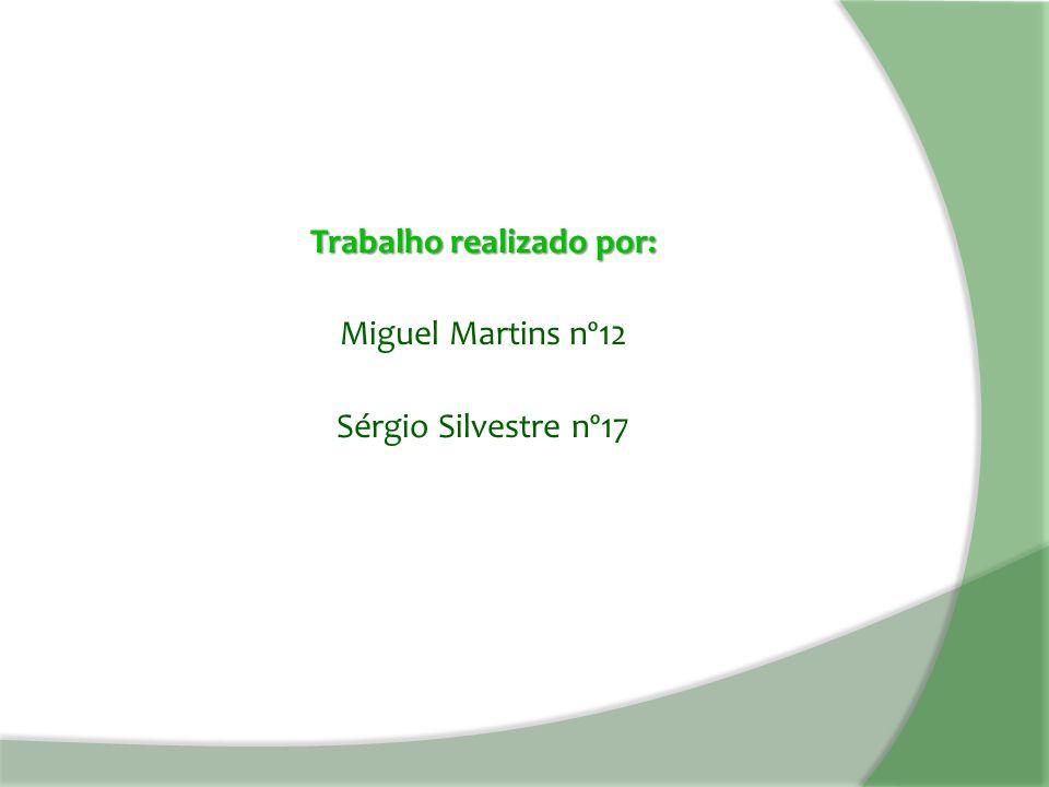 Trabalho realizado por: Miguel Martins nº12 Sérgio Silvestre nº17
