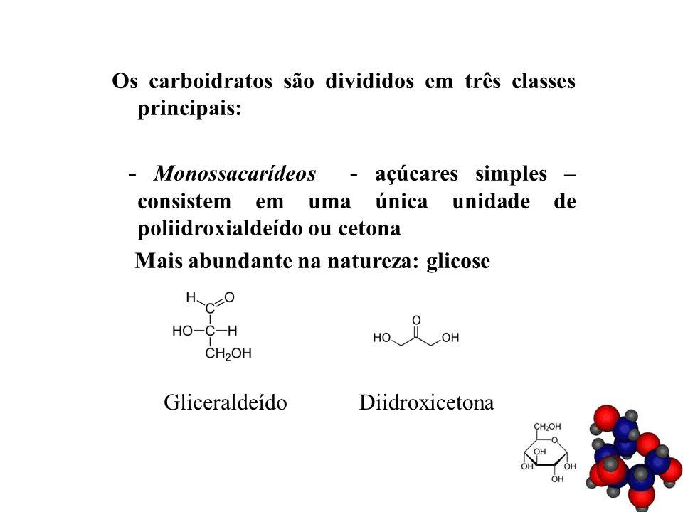 Os carboidratos são divididos em três classes principais: - Monossacarídeos - açúcares simples – consistem em uma única unidade de poliidroxialdeído o