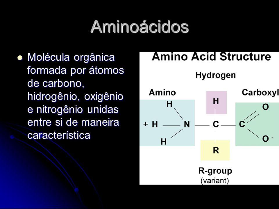 Aminoácidos Molécula orgânica formada por átomos de carbono, hidrogênio, oxigênio e nitrogênio unidas entre si de maneira característica Molécula orgânica formada por átomos de carbono, hidrogênio, oxigênio e nitrogênio unidas entre si de maneira característica