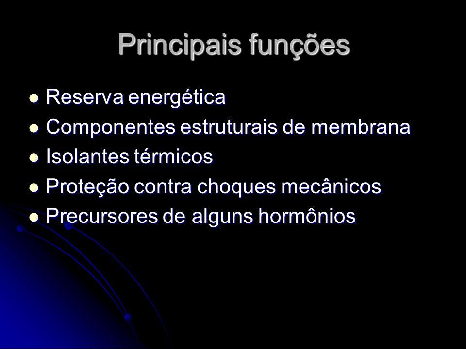 Principais funções Reserva energética Reserva energética Componentes estruturais de membrana Componentes estruturais de membrana Isolantes térmicos Isolantes térmicos Proteção contra choques mecânicos Proteção contra choques mecânicos Precursores de alguns hormônios Precursores de alguns hormônios