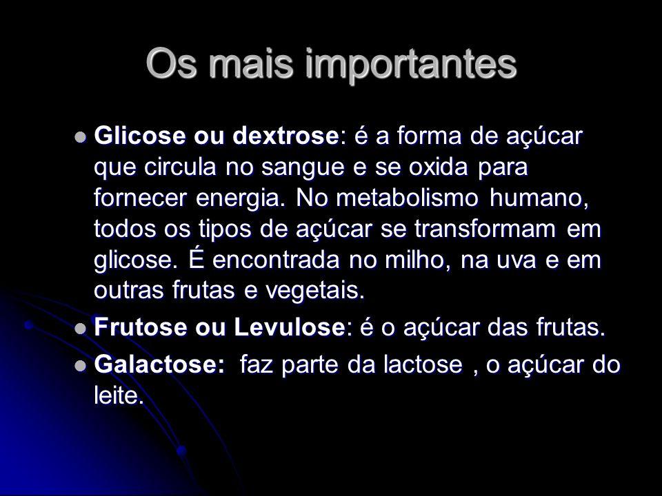 Os mais importantes Glicose ou dextrose: é a forma de açúcar que circula no sangue e se oxida para fornecer energia.