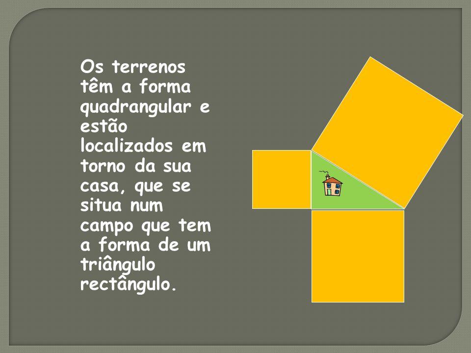 Os terrenos têm a forma quadrangular e estão localizados em torno da sua casa, que se situa num campo que tem a forma de um triângulo rectângulo.