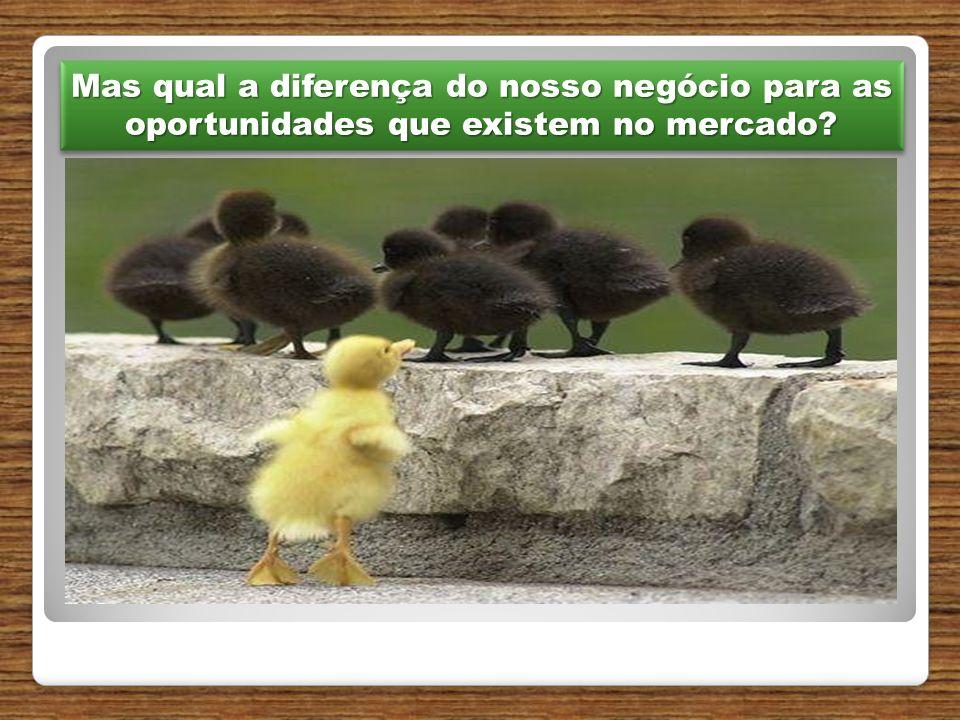 Mas qual a diferença do nosso negócio para as oportunidades que existem no mercado?