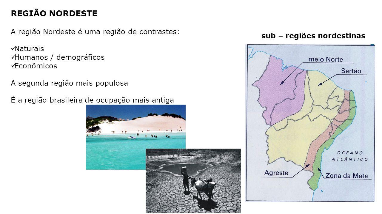 REGIÃO NORDESTE A região Nordeste é uma região de contrastes: Naturais Humanos / demográficos Econômicos A segunda região mais populosa É a região brasileira de ocupação mais antiga sub – regiões nordestinas